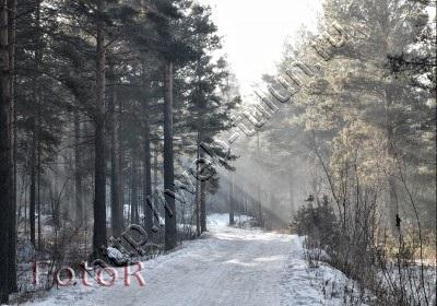 Зимняя дорожка, альбом Природа Тулуна и нашего региона