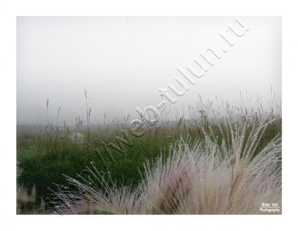 стекольный, альбом Природа Тулуна и нашего региона